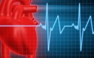 Почему бывает тахикардия