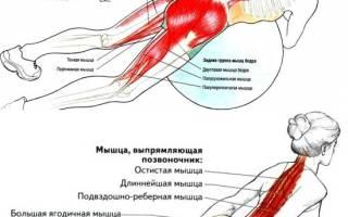 Гипертензия упражнение на спину в домашних условиях
